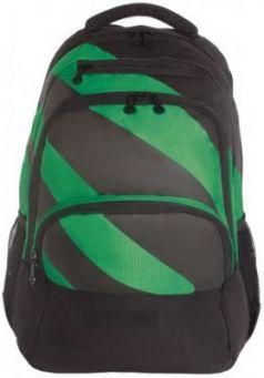 Рюкзак GRIZZLY универсальный, черный/зеленый, 32х45х23 см, RU-924-1/2
