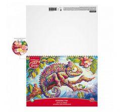 Альбом для рисования А4 20л ArtBerry Хамелеон