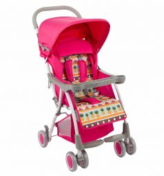 Прогулочная коляска Glory 1007 (2019), цвет: розовый