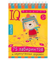 Сборник Айрис 75 лабиринтов, Умный блокнот 5+