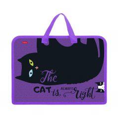 Папка для тетрадей А4 Hatber Все любят котиков