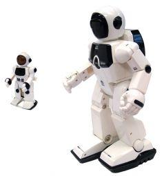 Робот на радиоуправлении Silverlit программируемый (36 функций)