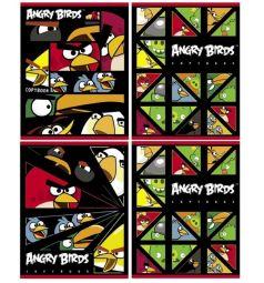 Тетрадь А5 48 листов клетка Hatber Angry Birds на гребне