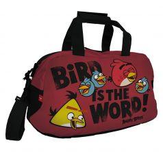 Сумка школьная Rovio Angry Birds спортивная с карманом