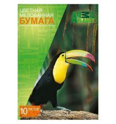 Бумага цветная А4 10л Action Animal Planet 10 цветов