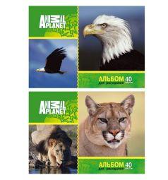 Альбом для рисования 40 листов Action Animal Planet