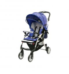 Прогулочная коляска Jetem Tourneo, цвет: flover blue/licht grey